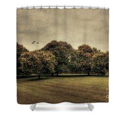 Es Una Hermosa Noche Shower Curtain by Darren Fisher