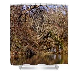 Escape From Reality  Shower Curtain by Debra Forand