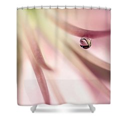 Shower Curtain featuring the photograph Escape Route by Annie Snel