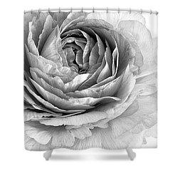 Essence Shower Curtain by Priska Wettstein