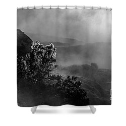Ethereal Beauty In Black And White Shower Curtain