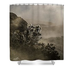 Ethereal Beauty Shower Curtain