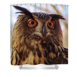 Shower Curtain featuring the photograph Eurasian Eagle Owl by Cynthia Guinn