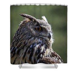 Eurasian Eagle-owl Shower Curtain by Garry Gay
