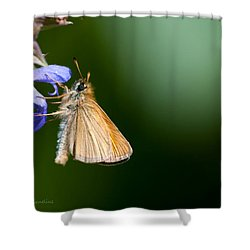 European Skipper Shower Curtain by Torbjorn Swenelius