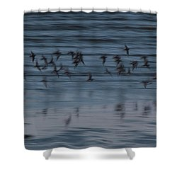 Shower Curtain featuring the photograph Evening Abstract by Alex Lapidus