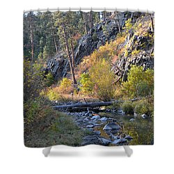 Evening Approaches Spring Creek Shower Curtain