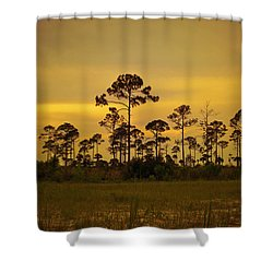 Evening At St. Joe Shower Curtain by Toni Hopper