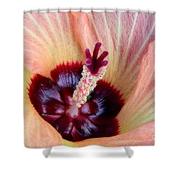 Evening Hau Blossom Shower Curtain by Mary Deal