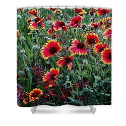 Evening In Bloom Shower Curtain