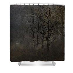 Evening Mist Shower Curtain by Ron Jones