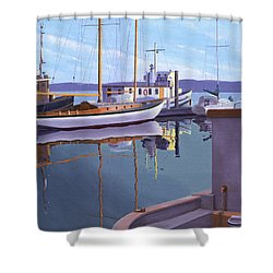 Evening On Malaspina Strait Shower Curtain