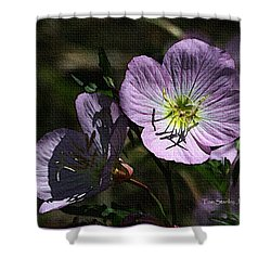 Evening Primrose Shower Curtain by Tom Janca