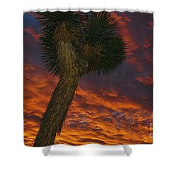 Evening Red Event Shower Curtain