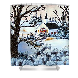 Shower Curtain featuring the painting Evening Services by Barbara Griffin