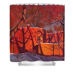 Shower Curtain featuring the painting Evening Shadows On A Round Taos House by Art James West