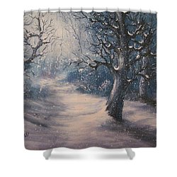 Shower Curtain featuring the painting Evening Snow by Megan Walsh