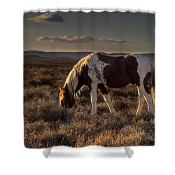 Evening Solitude In Sand Wash Basin Shower Curtain