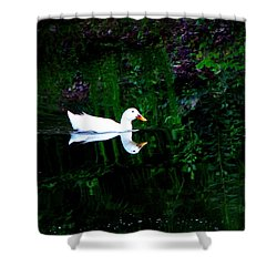 Shower Curtain featuring the photograph Evening Swim by Greg Simmons