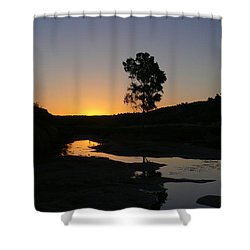 Shower Curtain featuring the photograph Evening Wonderland by Evelyn Tambour