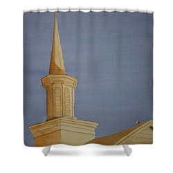 Shower Curtain featuring the painting Evening Worship by Stacy C Bottoms
