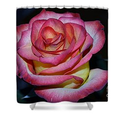 Event Rose Too Shower Curtain