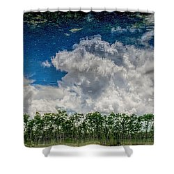 Reflected Everglades 0203 Shower Curtain