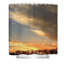 Everglades Clouds Shower Curtain by AR Annahita