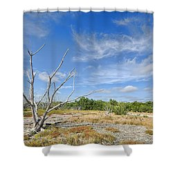 Everglades Coastal Prairies Shower Curtain by Rudy Umans