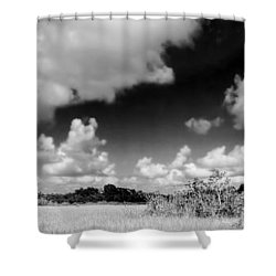 Everglades Panorama Shower Curtain by Rudy Umans