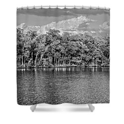 Everglades Shower Curtain by Timothy Lowry