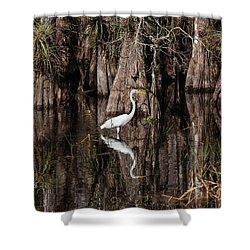 Everglades0419 Shower Curtain