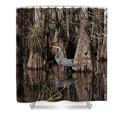 Everglades04414 Shower Curtain