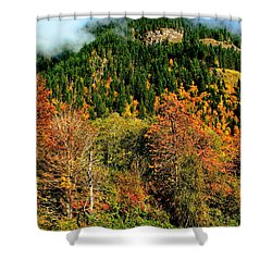 Evergreen Color Shower Curtain by Benjamin Yeager