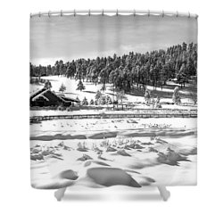 Evergreen Lake House In Winter Shower Curtain by Ron White