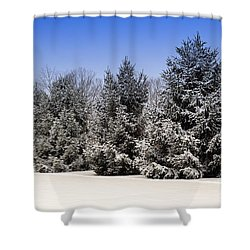 Evergreen Trees In Winter Shower Curtain