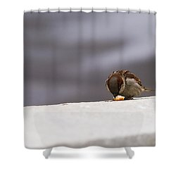 Every Day Brings Its Own Bread - Featured 3 Shower Curtain by Alexander Senin