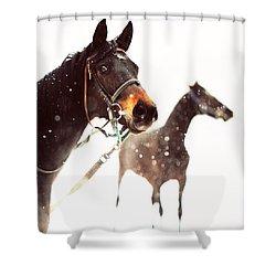 Everyone Has A Dream Shower Curtain by Jenny Rainbow