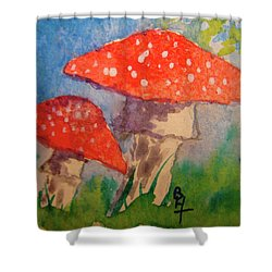 Everything Gets Brighter Shower Curtain by Beverley Harper Tinsley