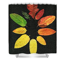 Evolution Of Autumn Bk Shower Curtain