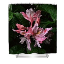 Shower Curtain featuring the photograph Exbury Azalea by Louise Kumpf