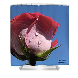 Excellence Centered  Shower Curtain