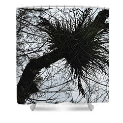 Exploding Branch Shower Curtain