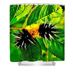 Exploring Possibilities Shower Curtain
