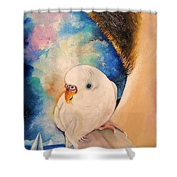 Exploring The World II Shower Curtain