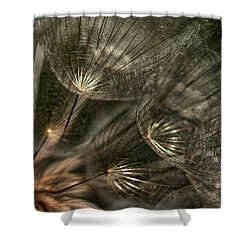 Explosion  Shower Curtain by Betty Depee