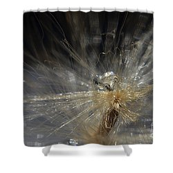 Explosion Shower Curtain by Michelle Meenawong