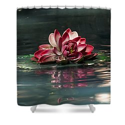 Shower Curtain featuring the photograph Exquisite Water Flower  by Lucinda Walter