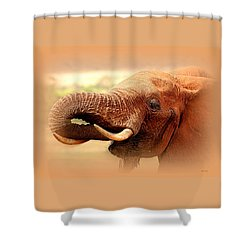 Extinction Is Forever Shower Curtain