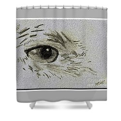 Eye - A Pencil Drawing By Marissa Shower Curtain